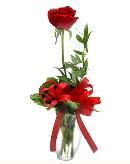 vazo içerisinde 1 adet kırmızı gül  Elazığ çiçek servisi , çiçekçi adresleri