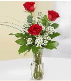 Vazo içerisinde 3 adet kırmızı gül  Elazığ çiçek mağazası , çiçekçi adresleri