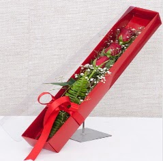 Kutu içerisinde 3 adet kırmızı gül  Elazığ çiçekçi telefonları