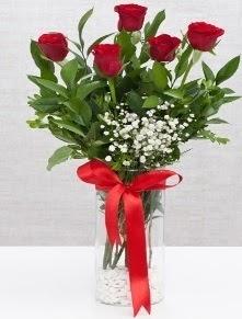 cam vazo içerisinde 5 adet kırmızı gül  Elazığ çiçek , çiçekçi , çiçekçilik