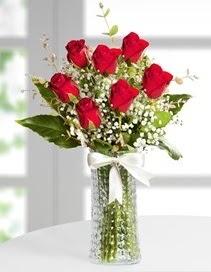 Cam vazoda 7 adet kırmızı gül  Elazığ kaliteli taze ve ucuz çiçekler