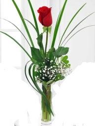 Cam içerisinde 1 kırmızı gül  Elazığ anneler günü çiçek yolla