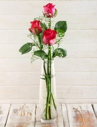 Cam içerisinde 3 kırmızı gül  Elazığ çiçek mağazası , çiçekçi adresleri