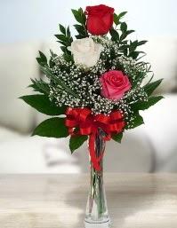 Camda 2 kırmızı 1 beyaz gül  Elazığ güvenli kaliteli hızlı çiçek