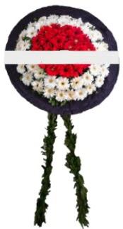 mozele çiçeği  Elazığ çiçek siparişi sitesi