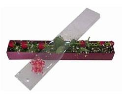 Elazığ çiçekçi mağazası   6 adet kirmizi gül kutu içinde