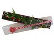 Elazığ yurtiçi ve yurtdışı çiçek siparişi  3 adet gül.kutu yaldizlidir.