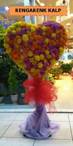 Ankara mevsim çiçeklerinden kalp perförje  Elazığ çiçek servisi , çiçekçi adresleri
