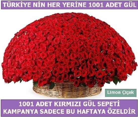 1001 Adet kırmızı gül Bu haftaya özel  Elazığ 14 şubat sevgililer günü çiçek