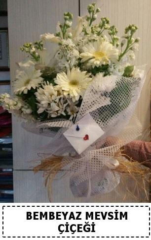 Bembeyaz görsel mevsim çiçek buketi  Elazığ hediye sevgilime hediye çiçek