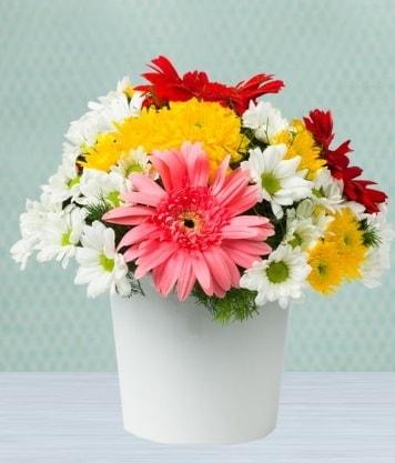 Seramik Vazoda Gelbera ve Papatya  Elazığ çiçek online çiçek siparişi