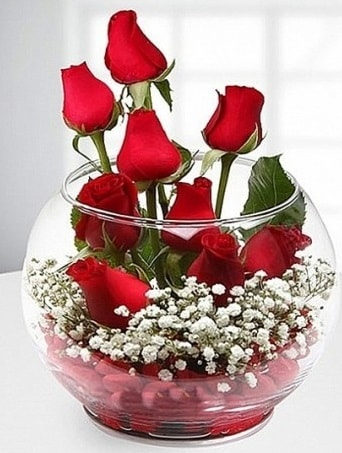 Kırmızı Mutluluk fanusta 9 kırmızı gül  Elazığ çiçek yolla , çiçek gönder , çiçekçi