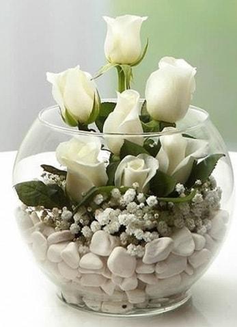 Beyaz Mutluluk 9 beyaz gül fanusta  Elazığ çiçek yolla , çiçek gönder , çiçekçi