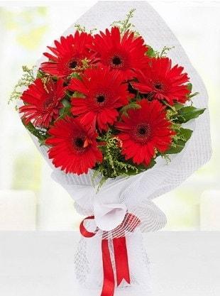 Kırmızı Gelbera Buketi  Elazığ çiçek yolla