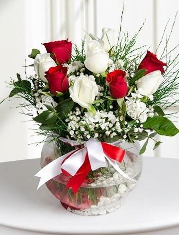 Aşk Küresi  5 beyaz 5 kırmızı gül fanusta  Elazığ İnternetten çiçek siparişi