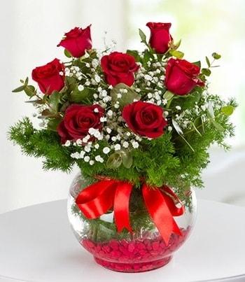fanus Vazoda 7 Gül  Elazığ kaliteli taze ve ucuz çiçekler