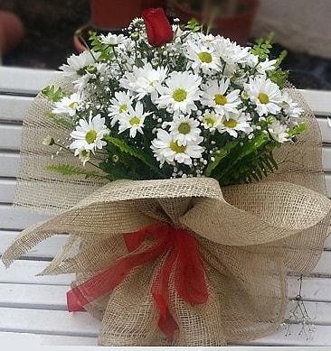 Papatya 1 adet kırmızı gül buketi  Elazığ çiçek gönderme sitemiz güvenlidir