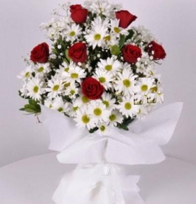 7 adet kırmızı gül ve papatyalar krizantem  Elazığ İnternetten çiçek siparişi