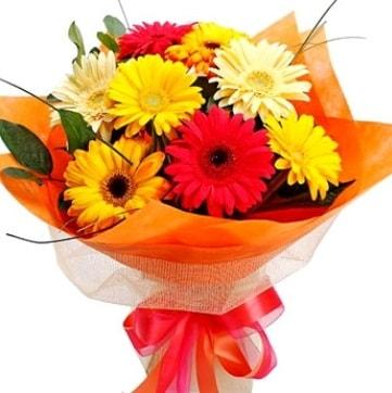 9 adet karışık gerbera buketi  Elazığ kaliteli taze ve ucuz çiçekler