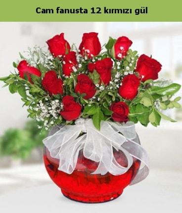 Cam içerisinde 12 adet kırmızı gül  Elazığ İnternetten çiçek siparişi