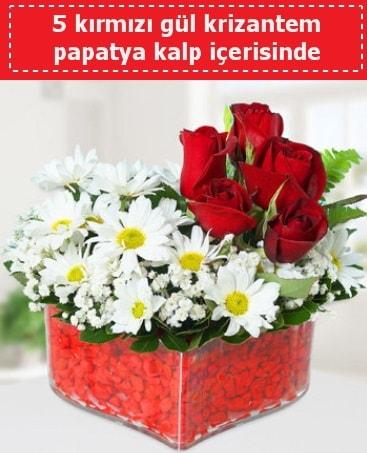 mika kalp içerisinde 5 kırmızı gül papatya  Elazığ çiçek online çiçek siparişi