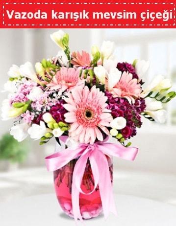 Vazoda karışık mevsim çiçeği  Elazığ kaliteli taze ve ucuz çiçekler