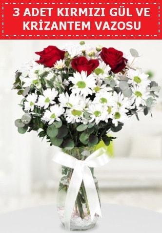 3 kırmızı gül ve camda krizantem çiçekleri  Elazığ çiçek online çiçek siparişi