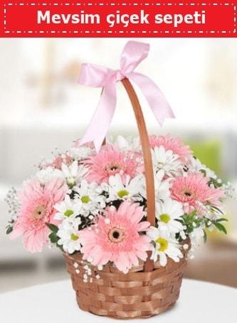 Mevsim kır çiçek sepeti  Elazığ kaliteli taze ve ucuz çiçekler