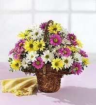 Elazığ çiçek gönderme sitemiz güvenlidir  Mevsim çiçekleri sepeti